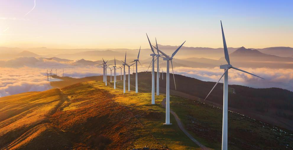 In Deutschland wurden 2019 kaum neue Windräder gebaut. Jetzt versucht die Regierung neue Anreize zu schaffen.