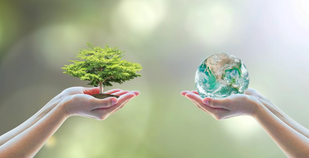 Die Weichen für eine Zukunft unseres Miteinanders und unseres Planeten zu stellen duldet keinen Aufschub. Die Stimme abzugeben reicht nicht. Die Gesellschaft selbst ist gefragt – und Kommunen haben bei dieser Weichenstellung ein besonderes Gewicht.